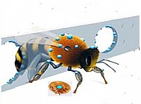 Fig 1 Illustration of Varroa-Gate A bee passes through a hole in the polymatrix carrier. The active ingredient (blue) is transferred to the integument of the bee and eliminates a phoretic mite.